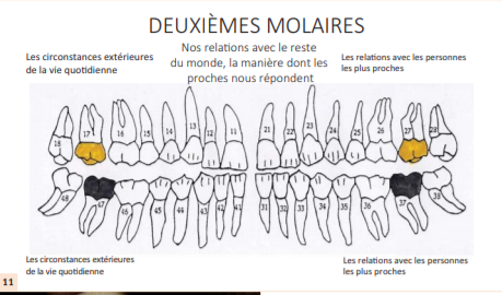 dentisterie holistique nice